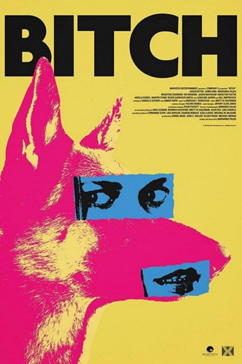 دانلود فیلم Bitch 2017